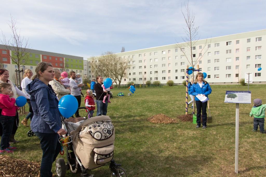 Baumpflanzaktion 2015 (30 von 73)